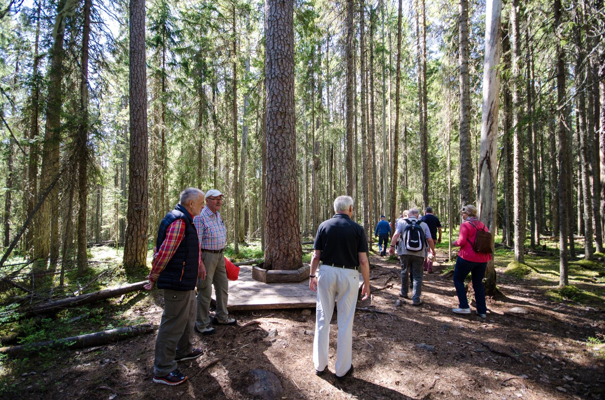 Pyhä Häkki Kansallispuisto