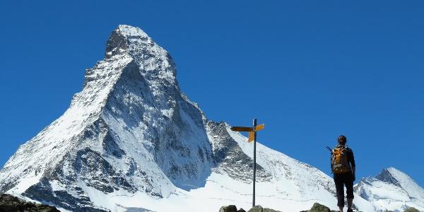 Schöner gehts nicht mehr: Matterhornblick auf Höhbalmen.