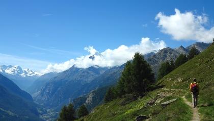 Höhenweg über dem Mattertal.