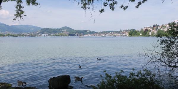 Am See entlang