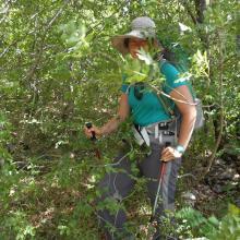 No trail, only thick bush to Oton