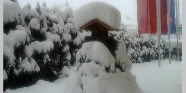 Winterbild im Jänner