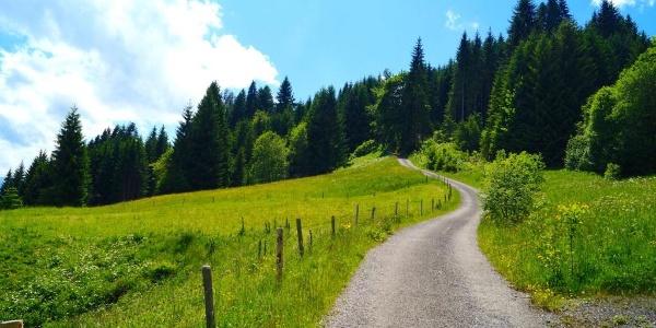 Weg oberhalb Hüttenberg