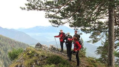 Aussichtspunkt am Weg zur Bärenriedlau