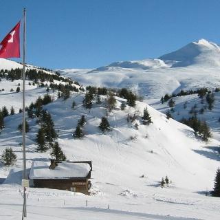Skihütte-Feldis