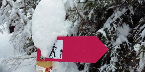Mit Schneemütze: Wegweiser Blaswald-Trail.