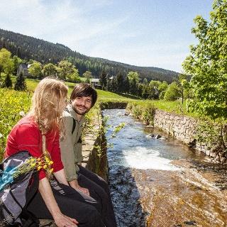 Am Pöhlwasser in Rittersgrün