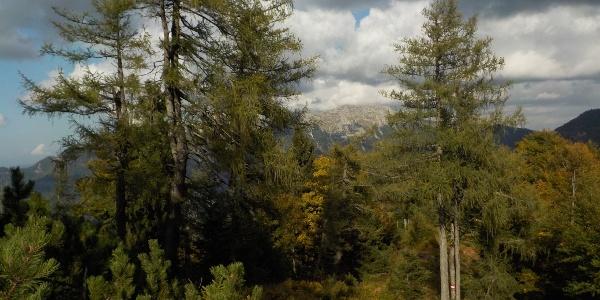 Alpintour Hochkar - Dürrenstein im Hintergrund (Teilstück)