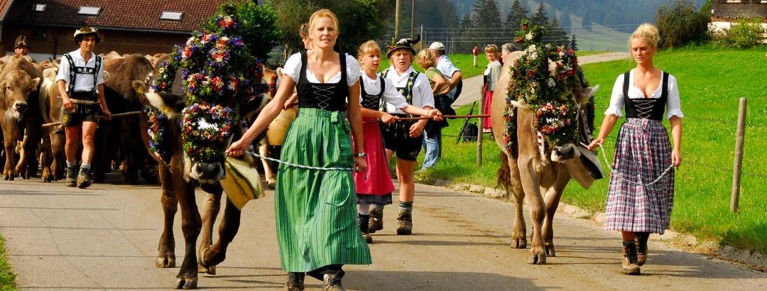 Viehscheid in Ofterschwang/Gunzesried