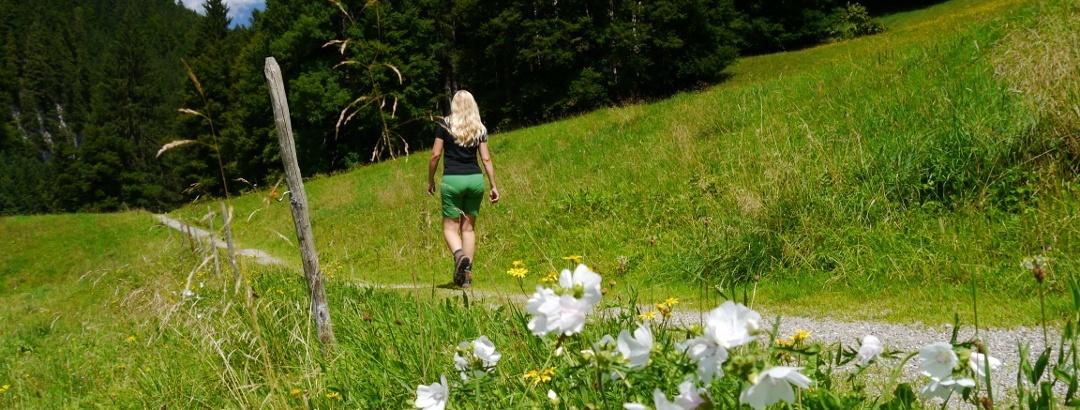 Hiking trail in the Oberallgäu