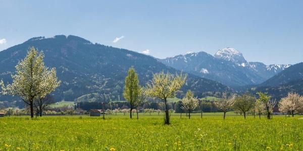 Blick auf Bad Feilnbach mit Wendelstein