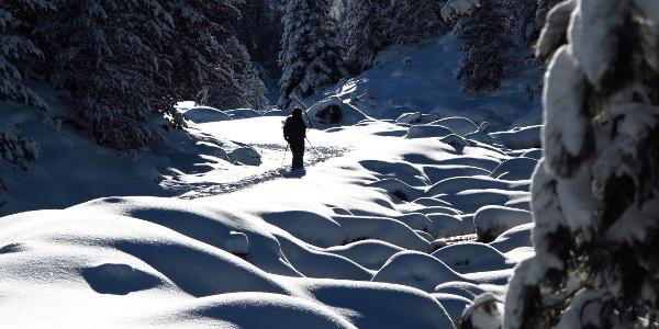 Schneeschuhwandern im Val S-charl.