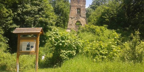 Die Ruine Speckfeld - traumhafter Picknickplatz