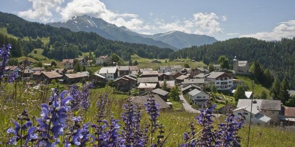 Dorf Feldis