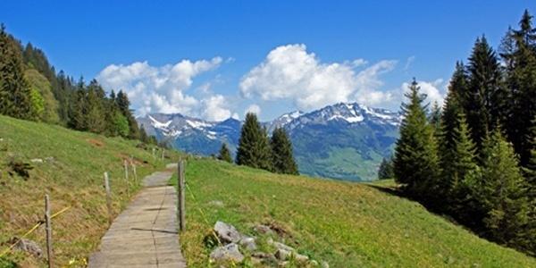 Unterwegs auf dem Schabziger Höhenweg