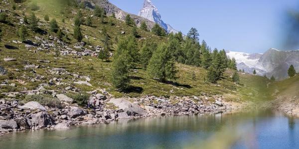 Le lac Grünsee