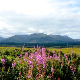 Views to Ben Nevis from Spean Bridge