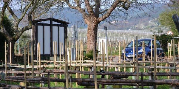 Historische Weinbauanlage