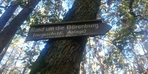 Ringwall Bärenburg