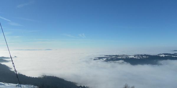 Blick vom Brüggelekopf ins Rheintal