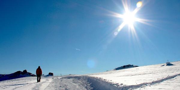 Auf dem «Glacier Walk» über den Tsanfleurongletscher.
