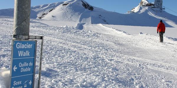 Der «Glacier Walk» ist ein gut markierter Gletscherspaziergang.