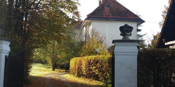 Schloss Söding_Hinterer Zugang