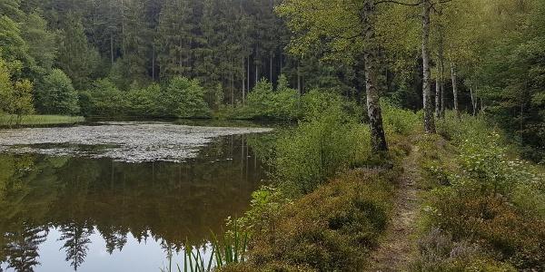 Gewässerlehrpfad Eubabrunn