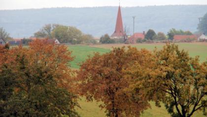 Pflaumfeld