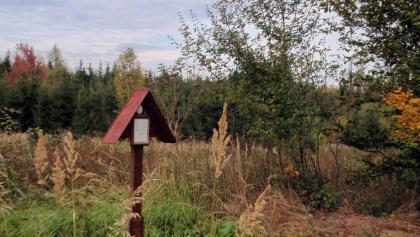 Niederstotzingen: Sparenwald: Bettelmannsgrab