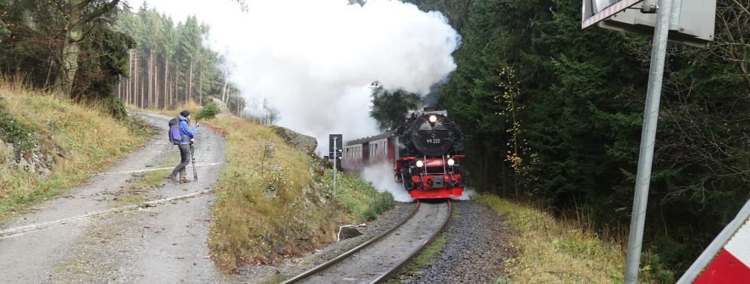 Brockenbahn bei Schierke