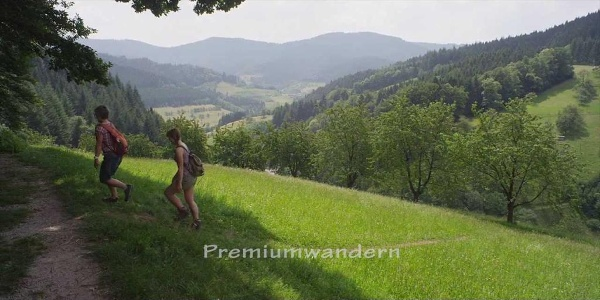 Schwarzwälder Wandersinfonie: Premiumwandern auf dem Schwarzwaldsteig