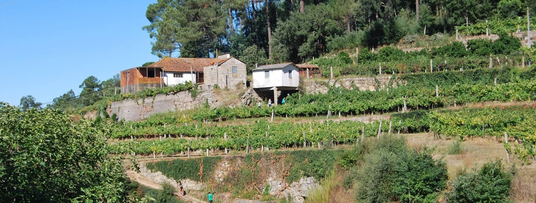Trailrunning Portugal