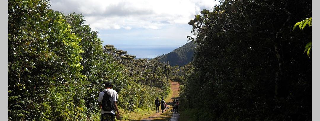 Macchabée  Trail