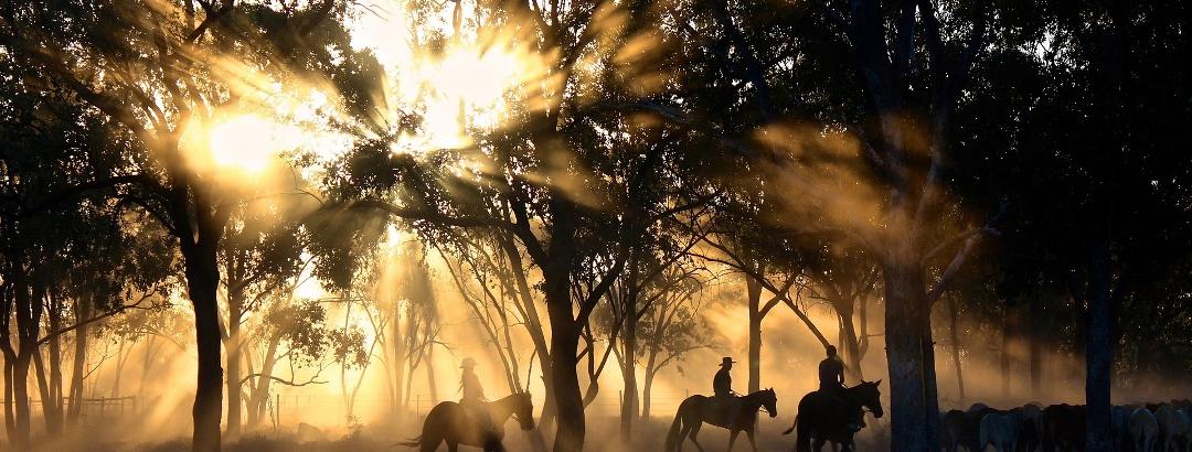 Reiter in Australien