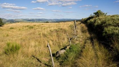 Margeride Plateau