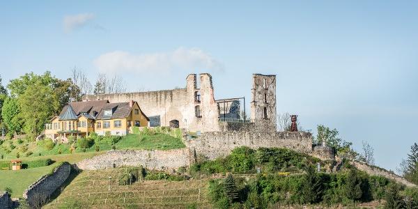 Blick auf die Burgruine Obervoitsberg