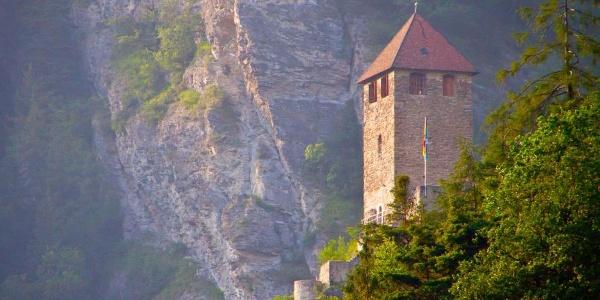Burg Oberjuvalt Sommer