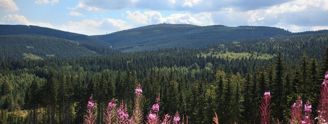 Ausblick von Neudorf auf den Fichtelberg