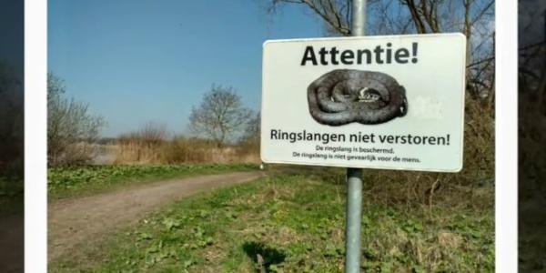 Reeuwijkse lakes, Pilgrim's route Zuid Holland