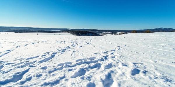 Winterlandschaft im Oberharz