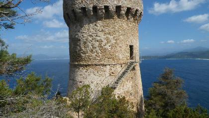 Genuesischer Wachturm auf Korsika