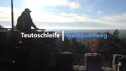 Waldauenweg | Premiumwanderwege Teutoschleifen | Tecklenburger Land | 4K