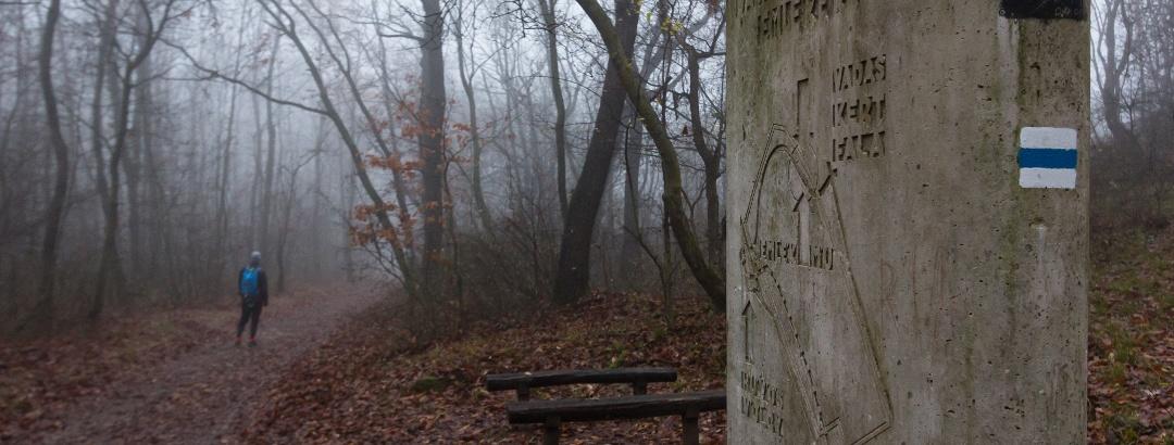 Am Denkmal des Wildgartens des Königs Matthias