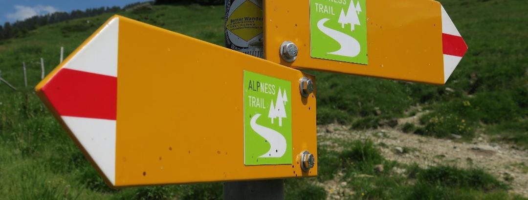 Nicht zu verfehlen: Alpness Trail