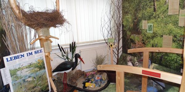 Wald-Erlebnis-Ausstellung Haus des Gastes - Der Zinsbach