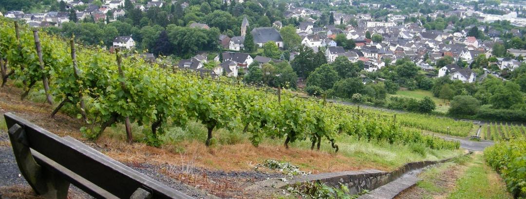 Rastbank mit Blick auf Oberdollendorf