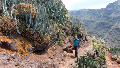Senderismo en las montañas de Anaga