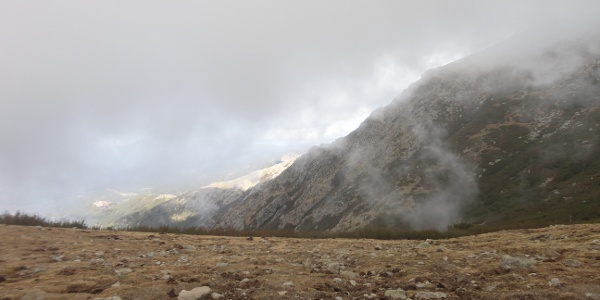 Schnell aufkommender Nebel