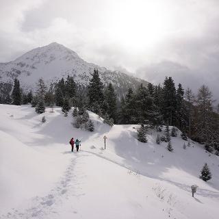 Winterwandern Stallwiesalm